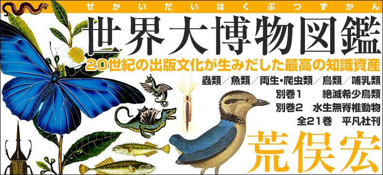世界大博物図鑑