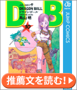 『DRAGON BALL』ブルマ