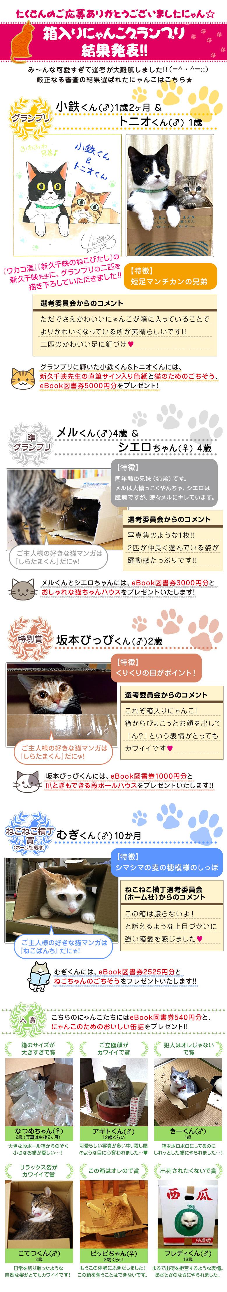 2月22日は「猫の日」☆箱入りにゃんこグランプリ、結果発表!!