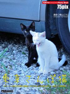 東京さんぽ猫