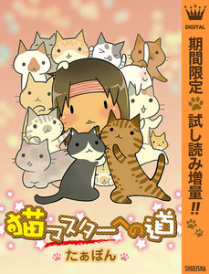 猫マスターへの道