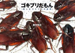 ゴキブリだもん〜美しきゴキブリの世界〜