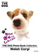 THE DOG Photo Book Collection