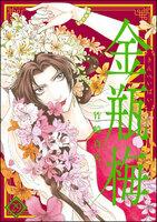 まんがグリム童話 金瓶梅 (29)