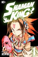 SHAMAN KING ~シャーマンキング~ KC完結版 (1~20巻セット)