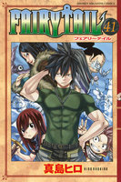 FAIRY TAIL (41)