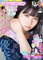 デジタル版ヤングガンガン 2018 No.12